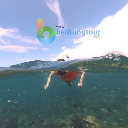 Diving snorkling